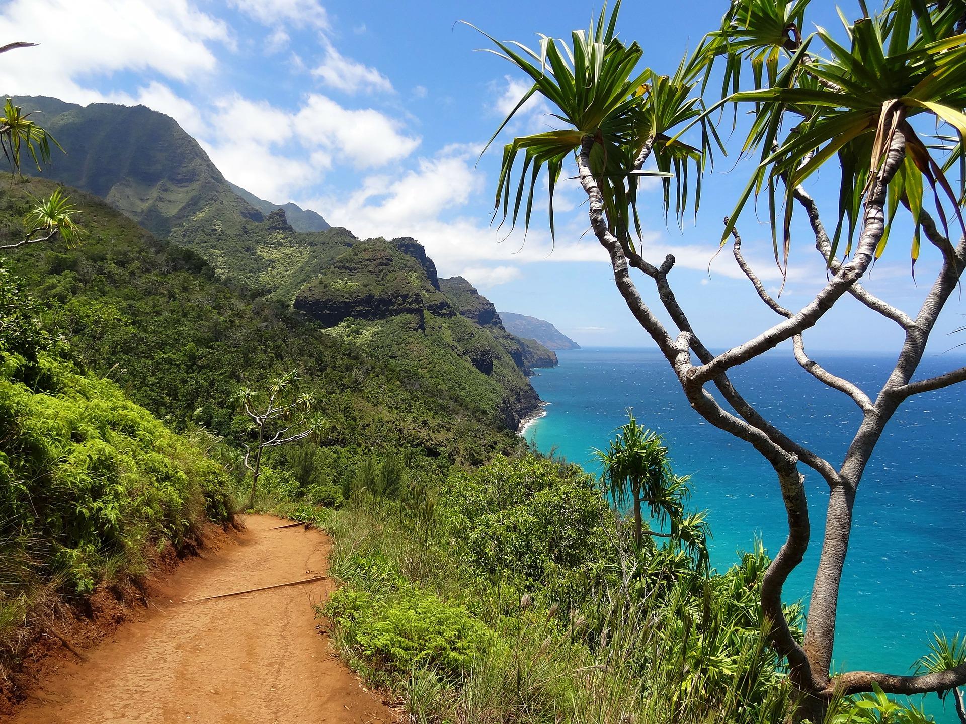 Good Vacation Activities In Hawaii